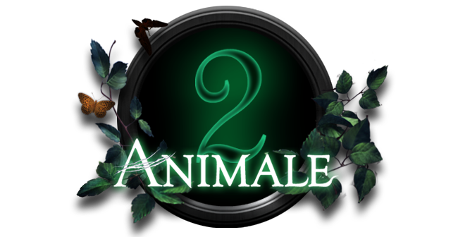 ANIMALE 2.png