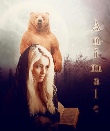 La force de l'ours par Sandra