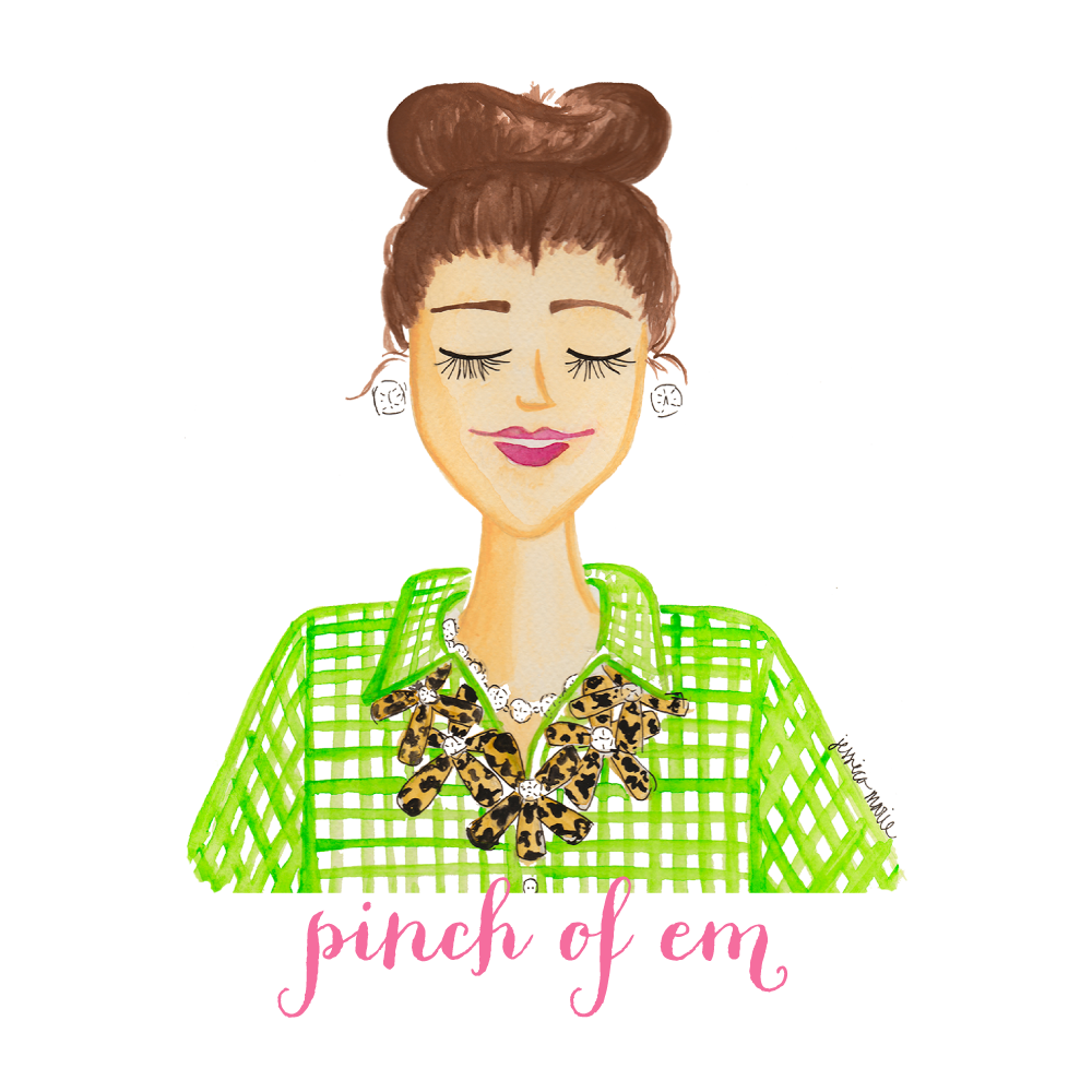 Custom Logo and Blog Header for Pinch of Em by Simply Jessica Marie