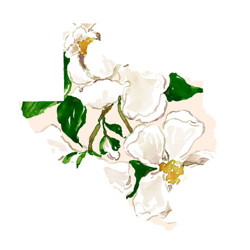 Magnolia-Texas-Design (2).png
