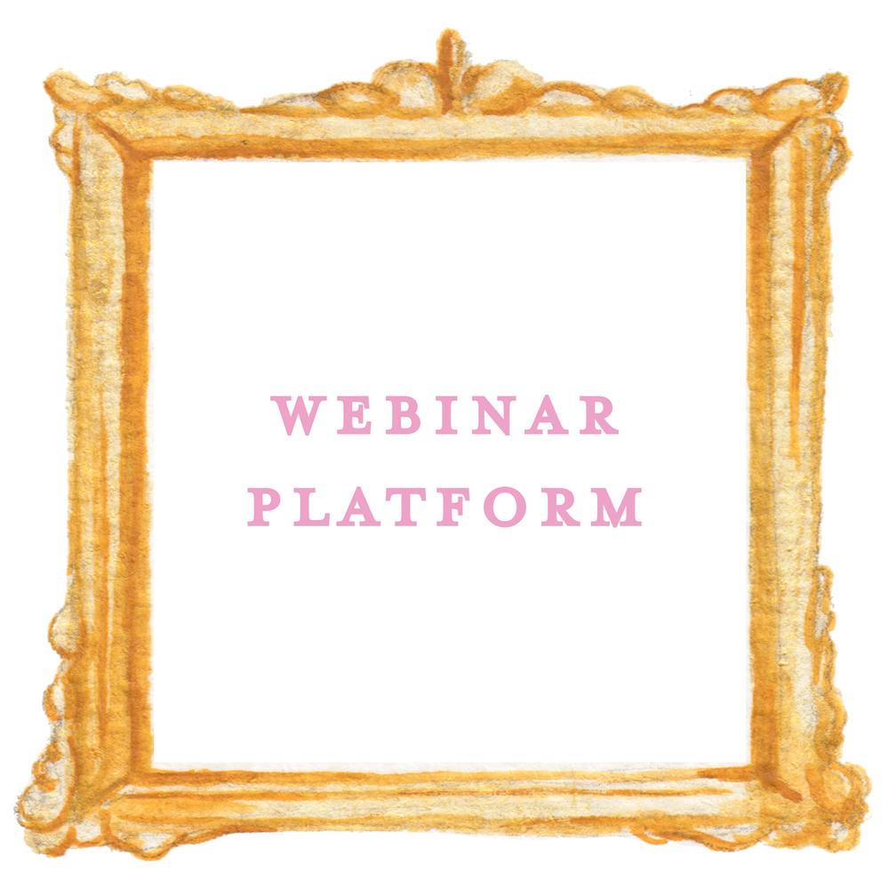 Webinar-Platform.png
