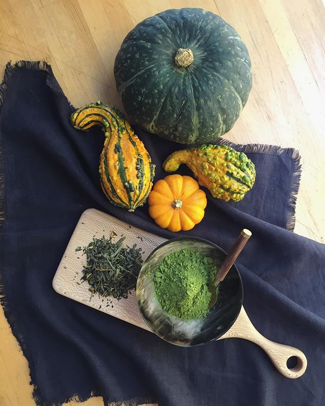Had so much fun shooting fall food trends with @clean.plates yesterday! 🍵#matcha #fallfood #cleaneating #fieldnotes / #connecticut