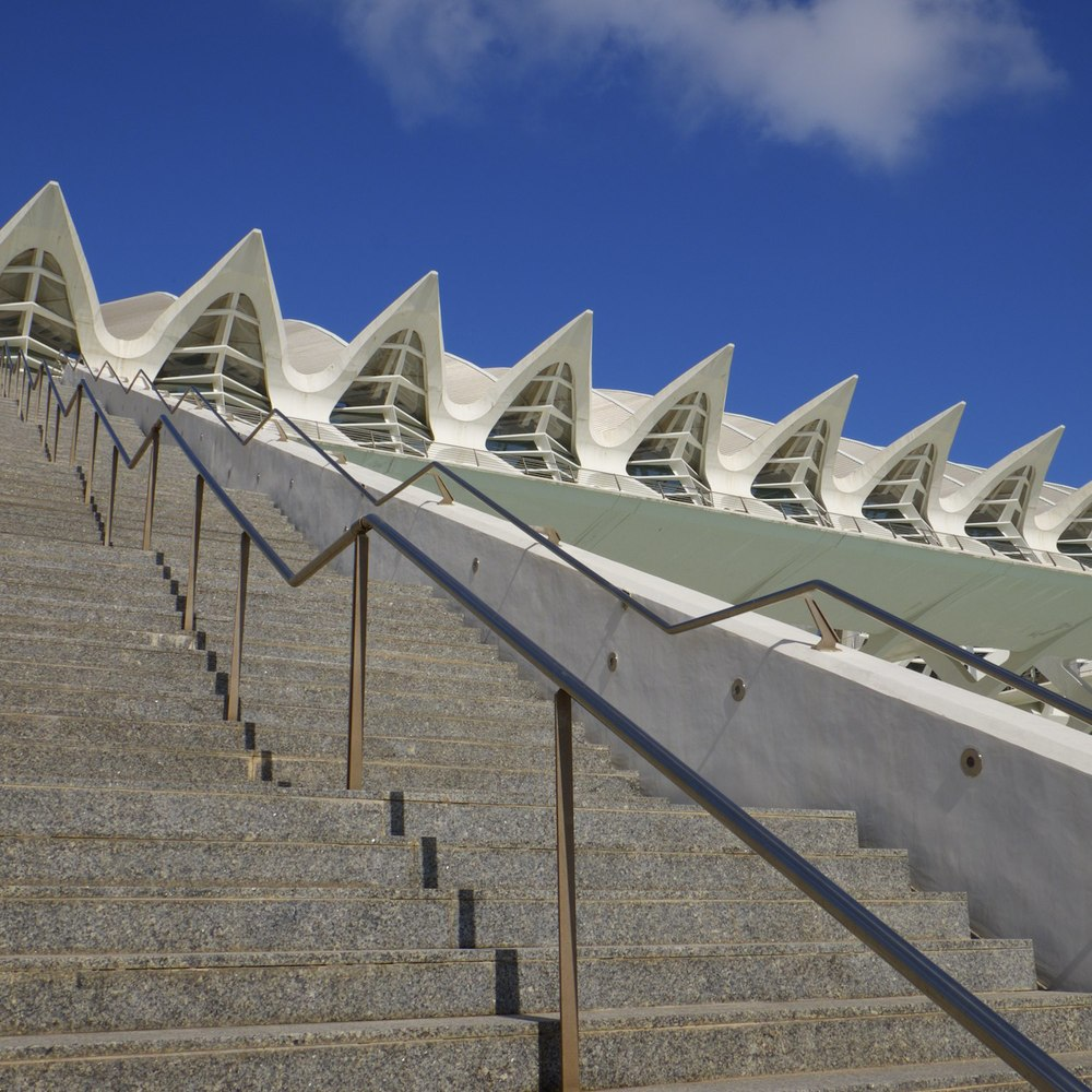 Christopher-Swan-Calatrava-Arts-Sciences-Valencia-2014 62014-09-30.jpg