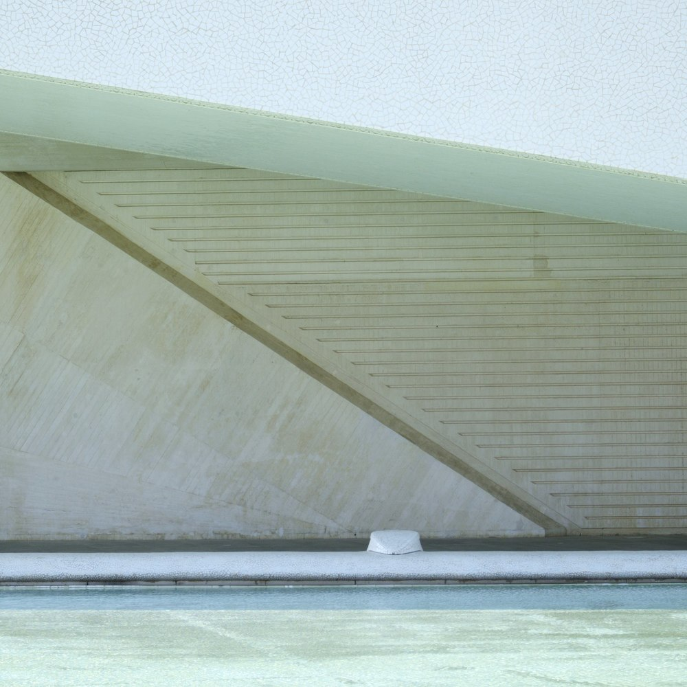 Christopher-Swan-Calatrava-Arts-Sciences-Valencia-2014 162014-09-30.jpg