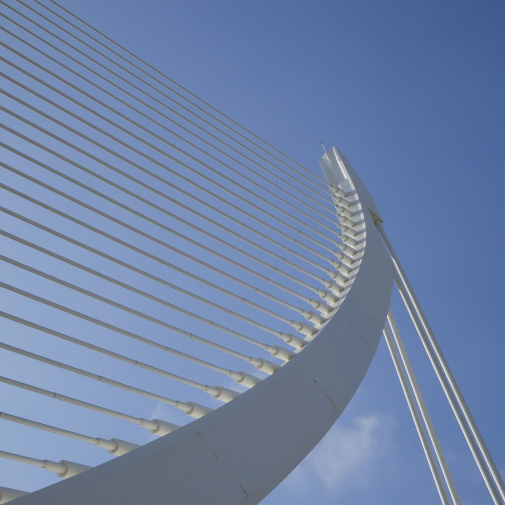 Christopher-Swan-Calatrava-Arts-Sciences-Valencia-2014 302014-09-30.jpg