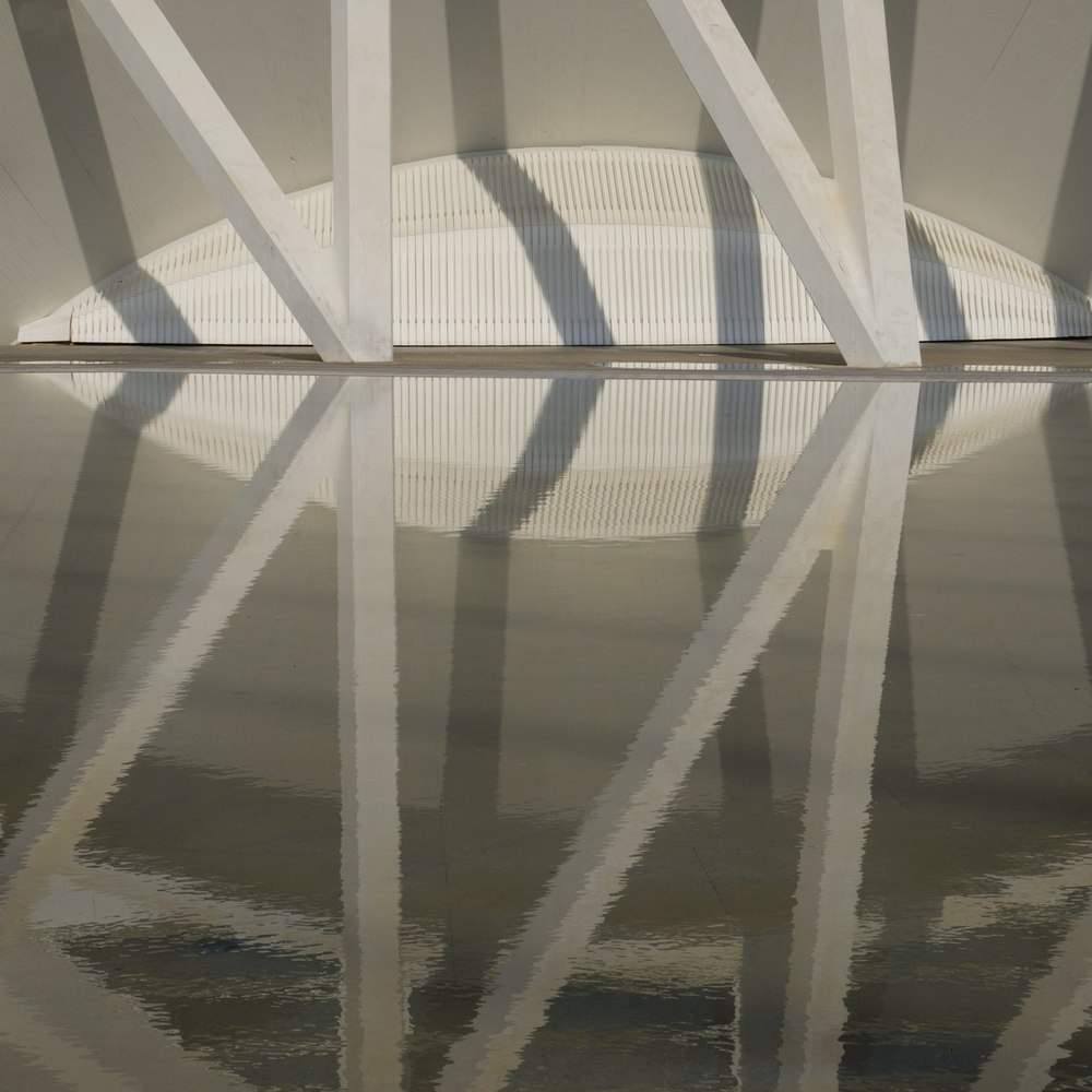 Christopher-Swan-Calatrava-Arts-Sciences-Valencia-2014 312014-09-30.jpg