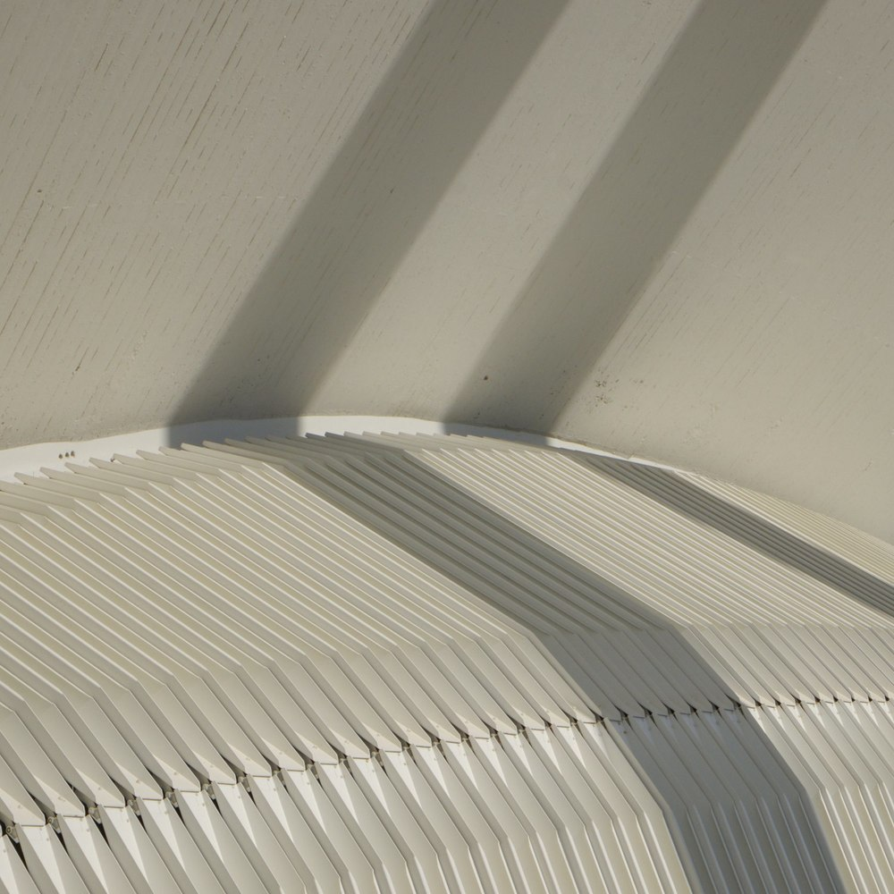 Christopher-Swan-Calatrava-Arts-Sciences-Valencia-2014 422014-09-30.jpg