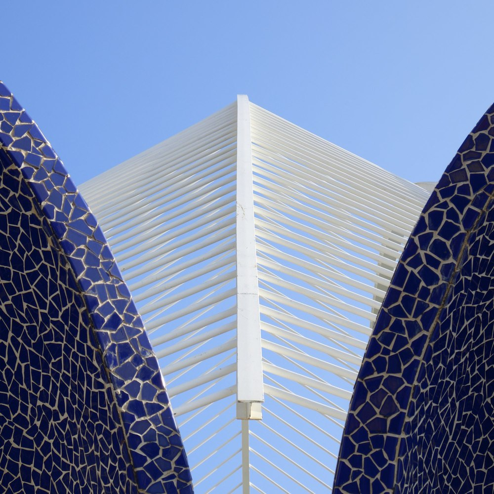 Christopher-Swan-Calatrava-Arts-Sciences-Valencia-2014 512014-09-30.jpg