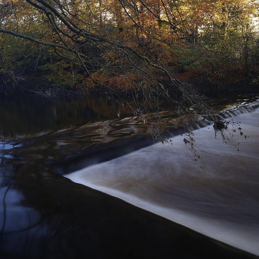 Christopher-Swan-Pollok-Park-Glasgow-2014-Novemebr 12014-11-09.jpg