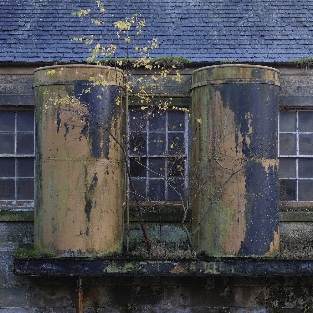 Christopher-Swan-Pollok-Park-Glasgow-2014-Novemebr 22014-11-09.jpg