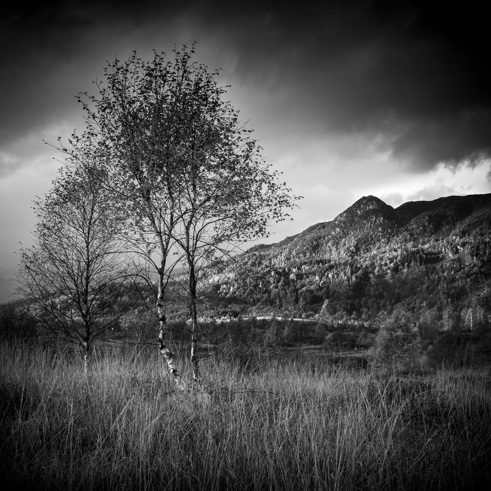 Christopher Swan Black and White Scotland-48.jpg