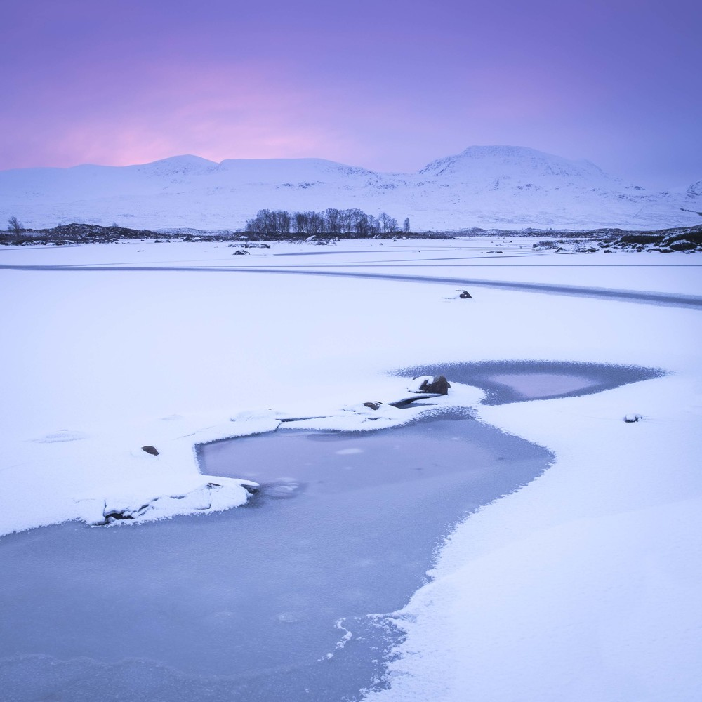 Christopher Swan - Rannoch Moor-1.jpg