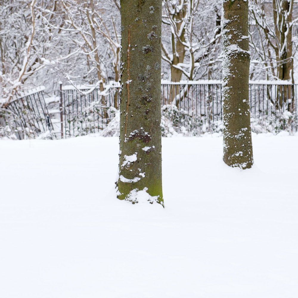 Christopher Swan-Glasgow-Snow-2.jpg