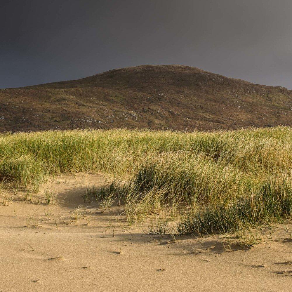 Christopher Swan Harris in the Autumn-4.jpg