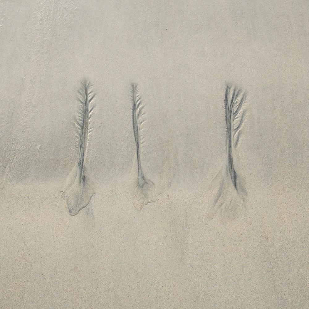 Christopher Swan Harris in the Autumn-17.jpg