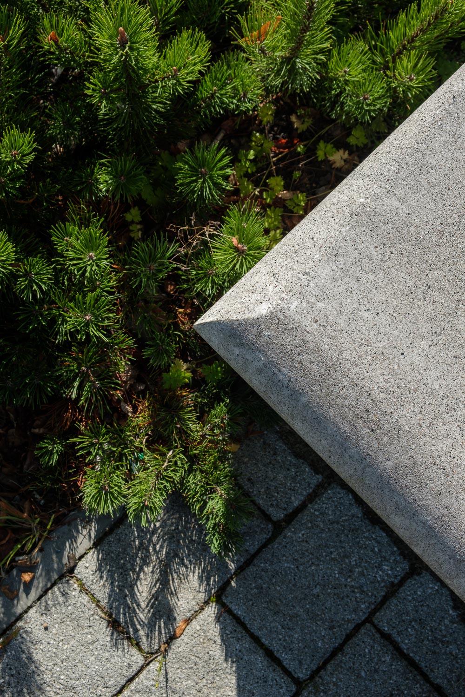 Christopher Swan-landscape-architecture-15.jpg