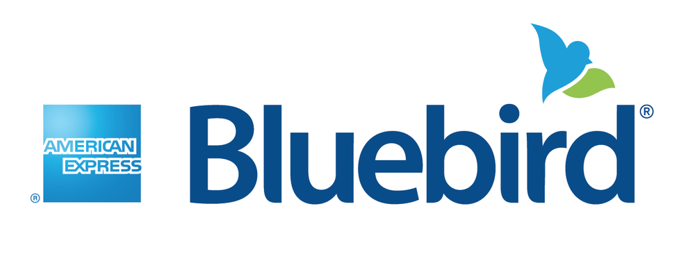 Bluebird logo lock-up