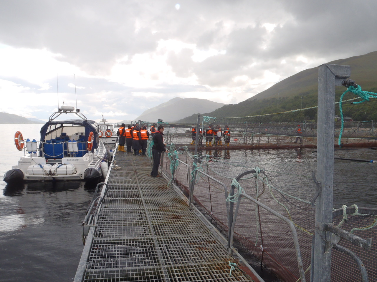 Viewing the Fish Farm in Loch Linnhe