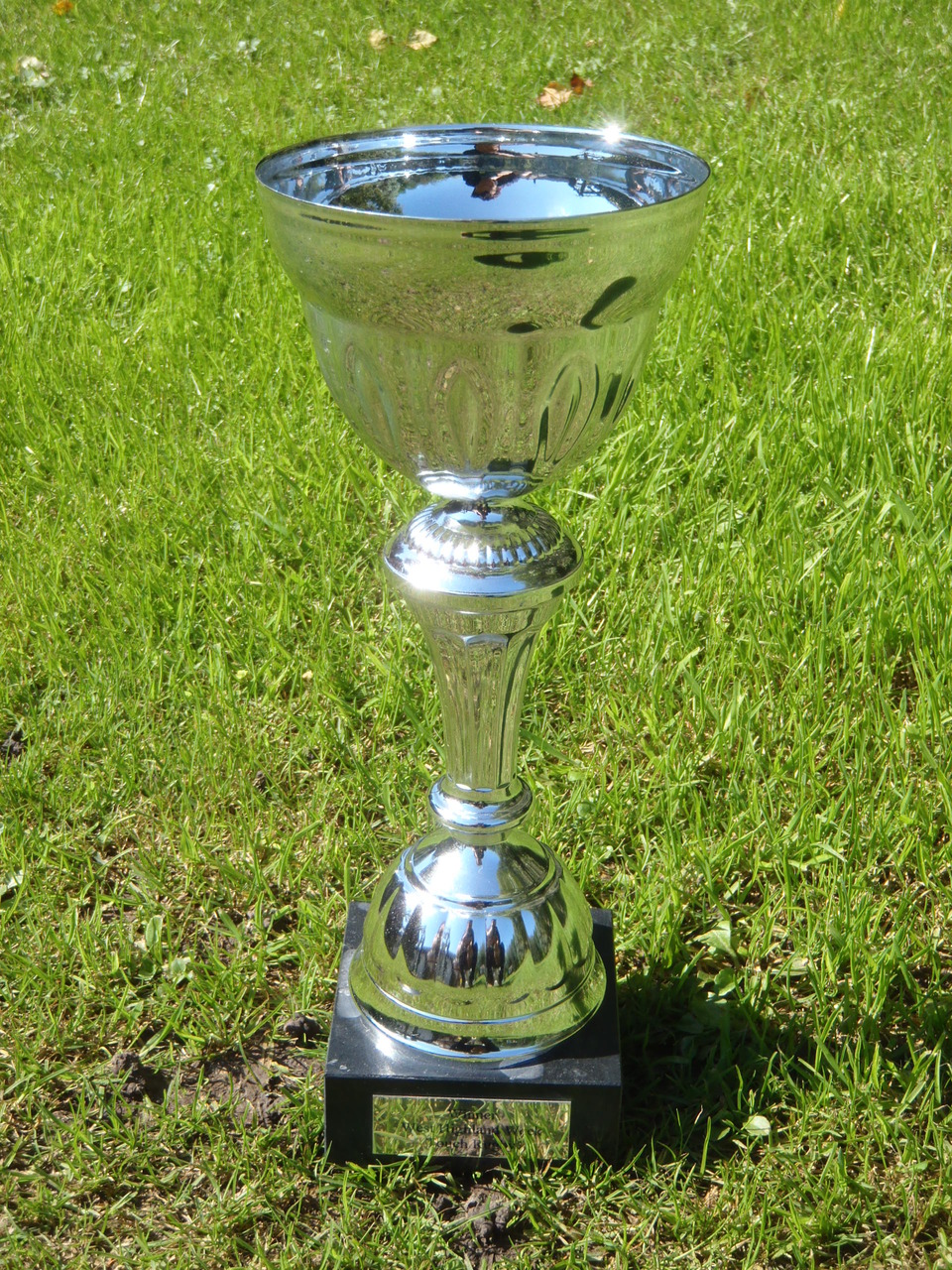 The Touch Rugby Trophy