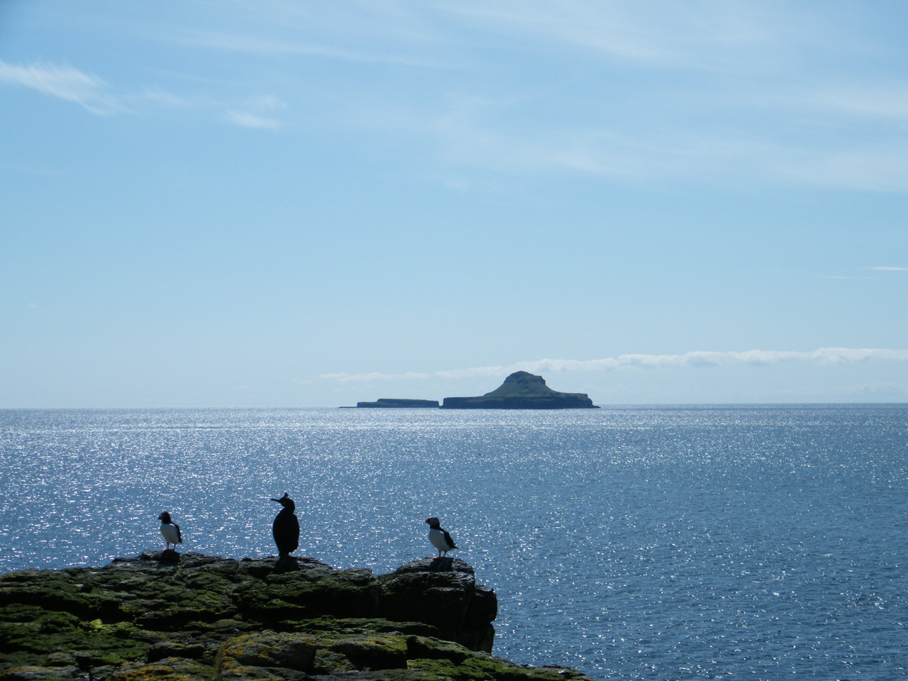 On the Treshnish Isles