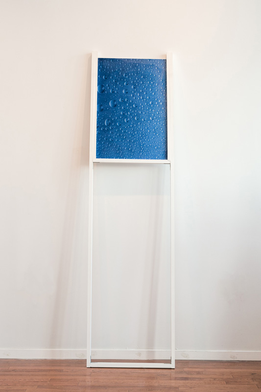 Wyatt Niehaus  New Identity Composition  2013 C-print, plexi, wood 70 x 18 x 2 inches