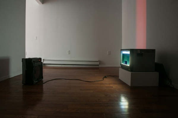 Samuel Payne  Dragging the Periphery (Displacement = Value): Montana, Wyoming, New York, Wisconsin, South Dakota, Idaho  2014 Video; Plastic, bolt, wood, amplifier, TV, cables Video: 6 minute loop; Installation: 16 x 19 x 16 inches Video: Edition of 3 + 1AP; Installation: Unique