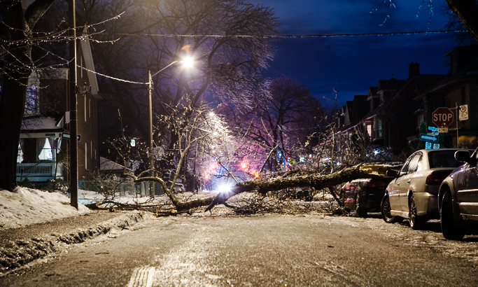 Fallen tree on Hepbourne Street. Ice storm Toronto, 2013. (Photo: Connie Tsang)