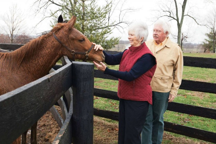 Tours de Force - Kentucky Horse Tours' Mary Anne Squires has been providing the inside scoop–literally–on Bluegrass Thoroughbred farms for two decades.
