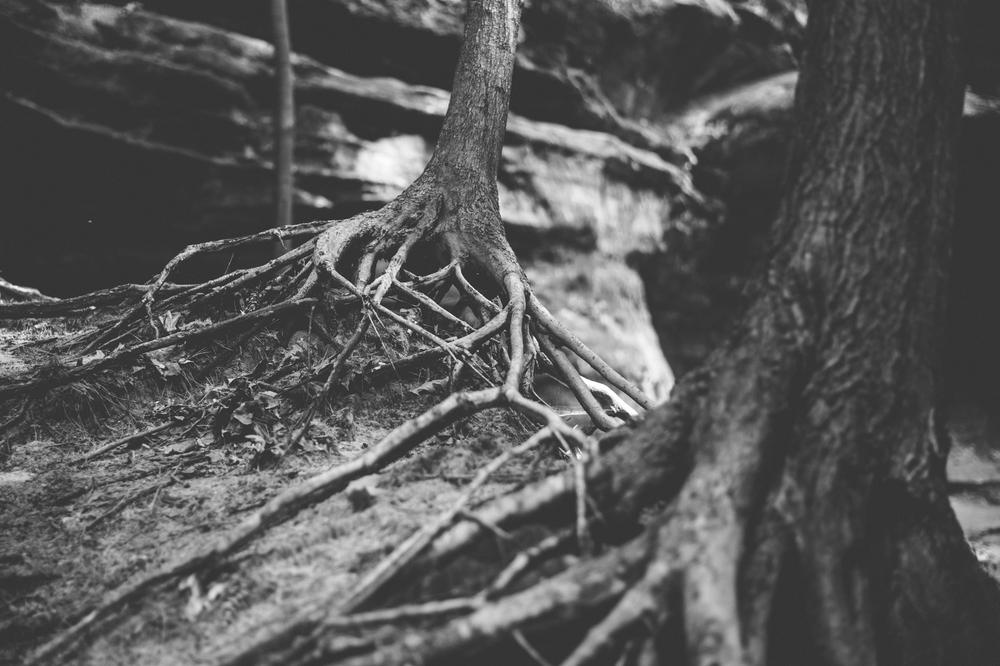 TaraShupe_Photography_Starve_Rock-_DSC9042.jpg