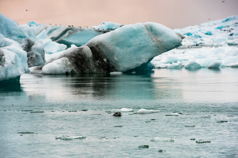 ICELAND_WOMAN_PHOTOGRAPHER_TARASHUPE_OUTDOOR_PHOTOGRAPHY_083.jpg