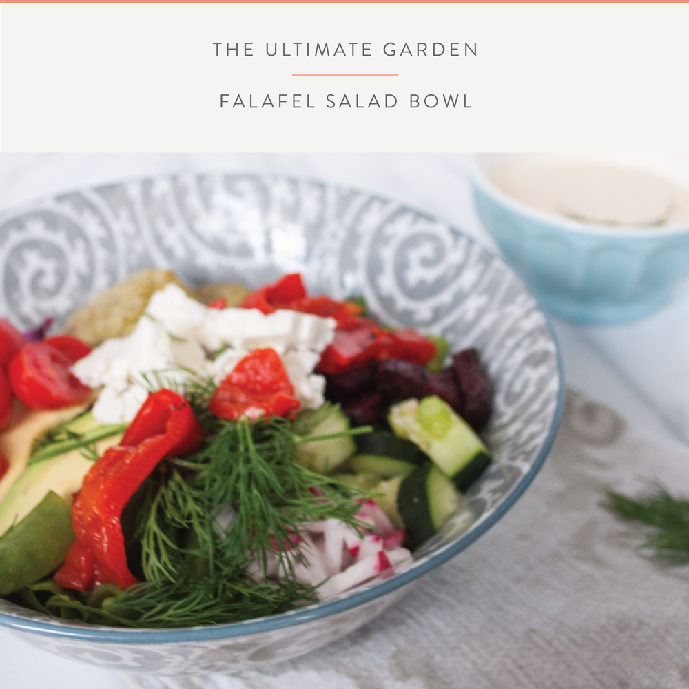 Summefield Delight | Garden Falafel Salad Bowl