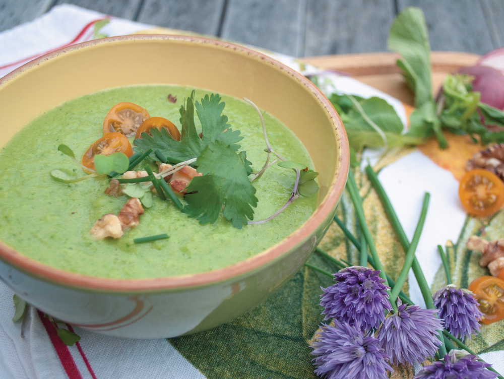 Green Gazpacho with Poblanos and Radishes
