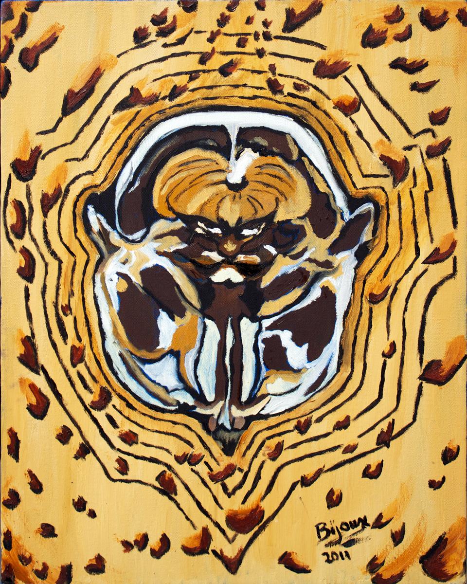 leopard-brain.jpg