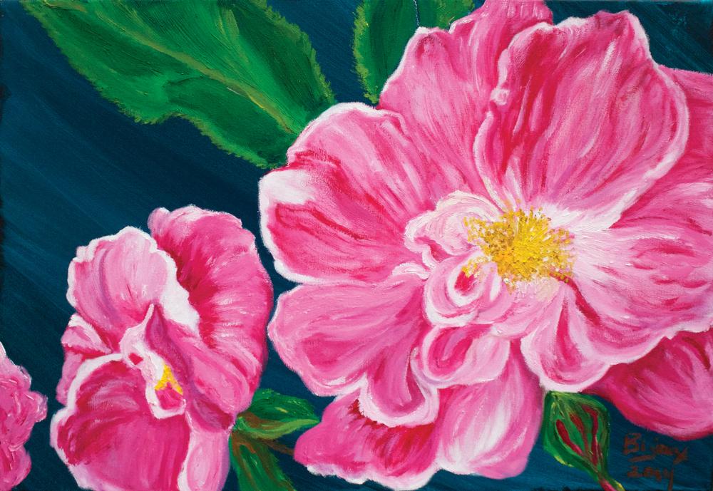 Wild Roses of Revelstoke