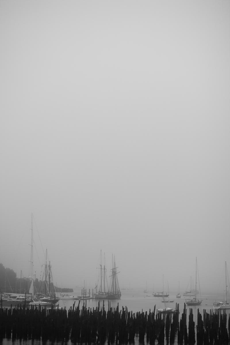 old-port-fog