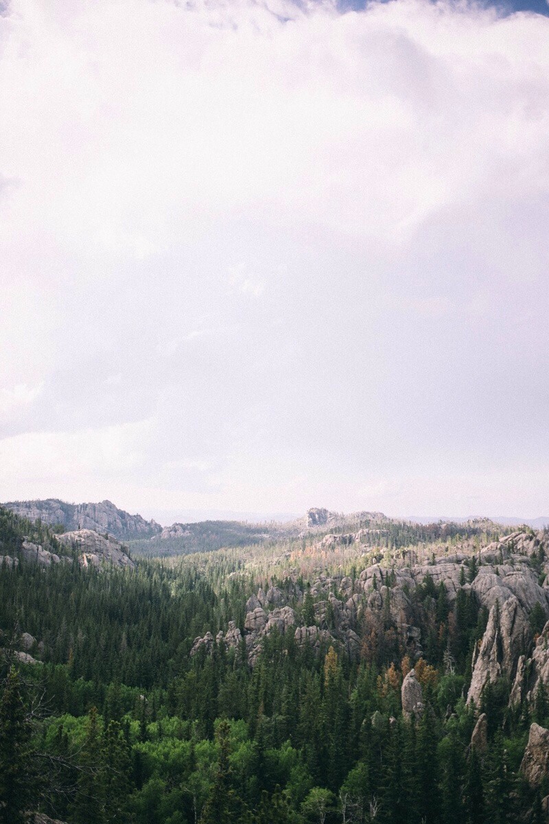 Black hills harney peak South Dakota