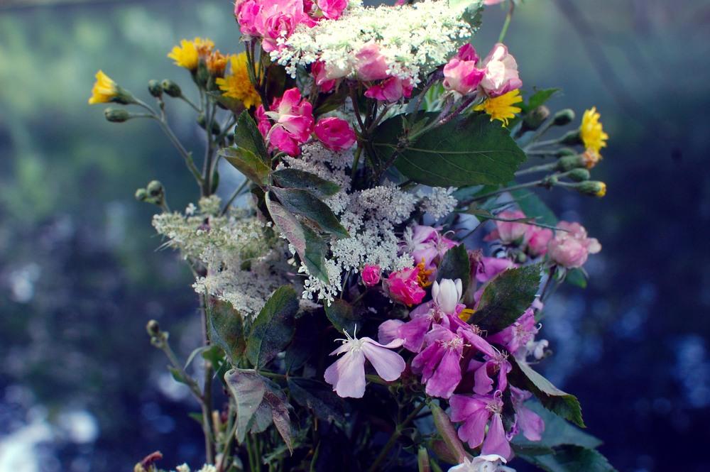 wild plante bouquet.jpg