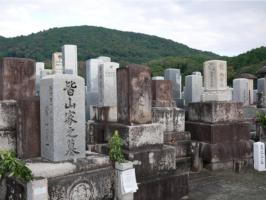 Japan_0008_P1030304.jpg