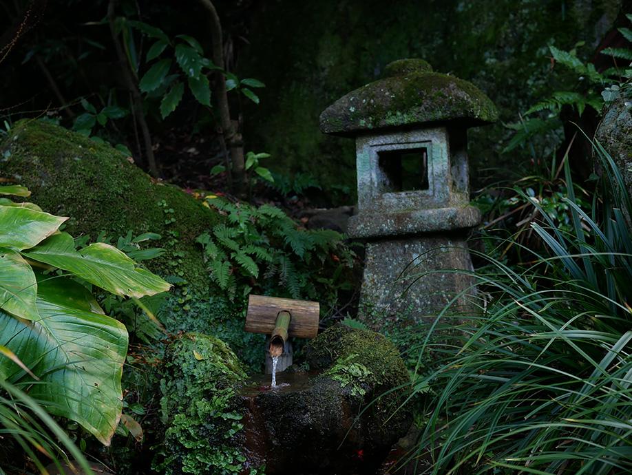 Japan_0010_P1030239.jpg