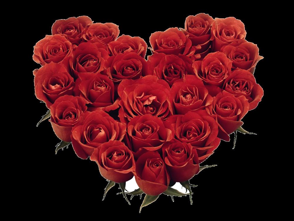 Valentine S Day Panacea Massage Spa