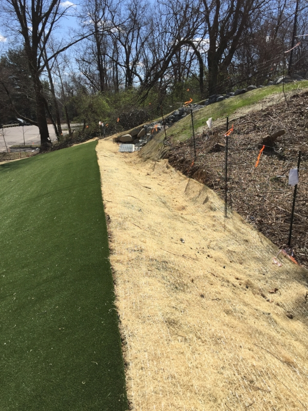 Stormwater control trench and drain at the top of the park.