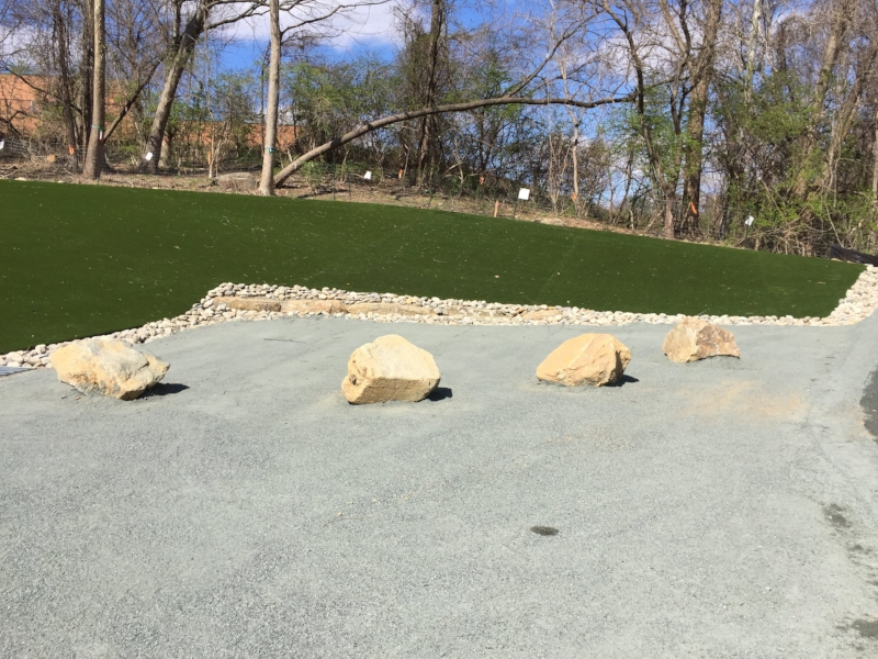 Decorative rocks. A bit too small to be much of a play structure for dogs, but provide some visual breakup of the surface.