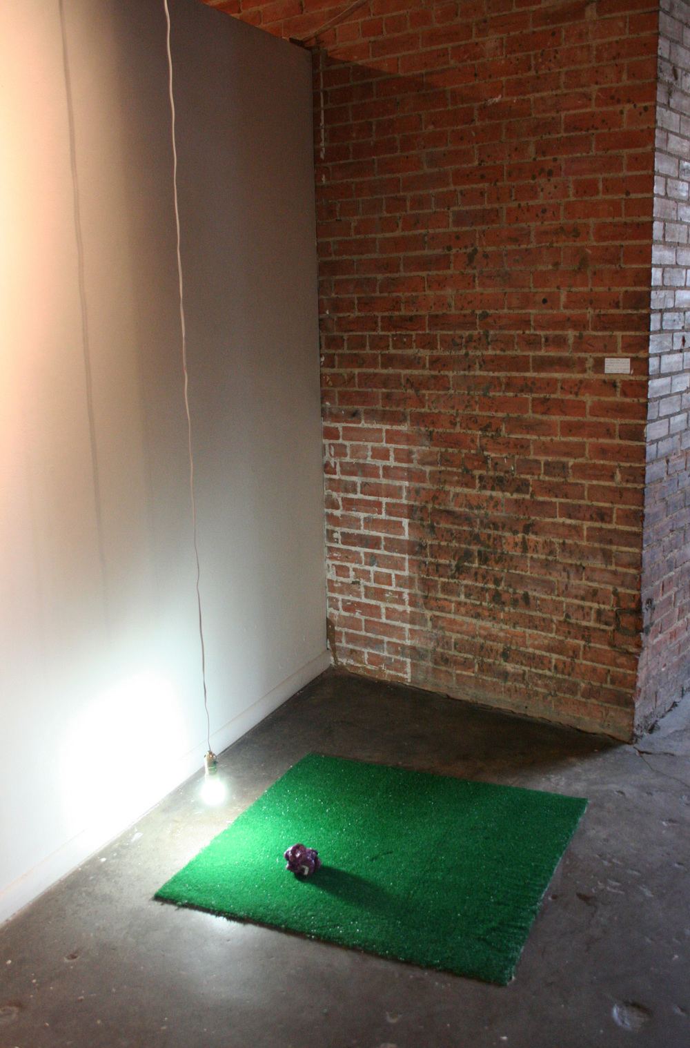 Untitled (Construction of green and daylight II)   enamel paint, turf, and CFL daylight bulb 2013 pictured at 500x Gallery, Dallas TX