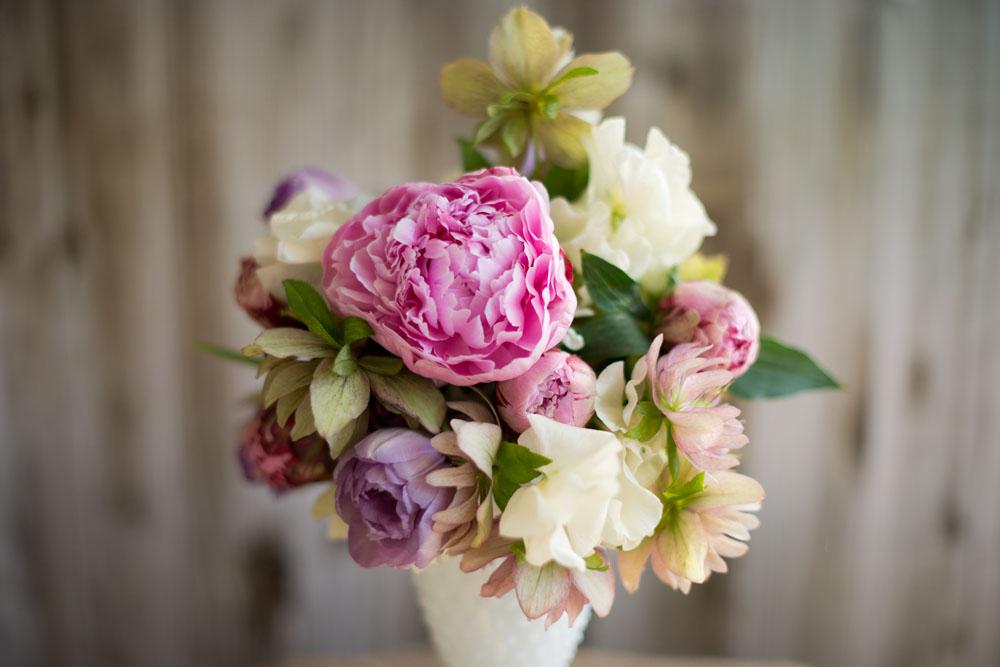 tulips_05.jpg