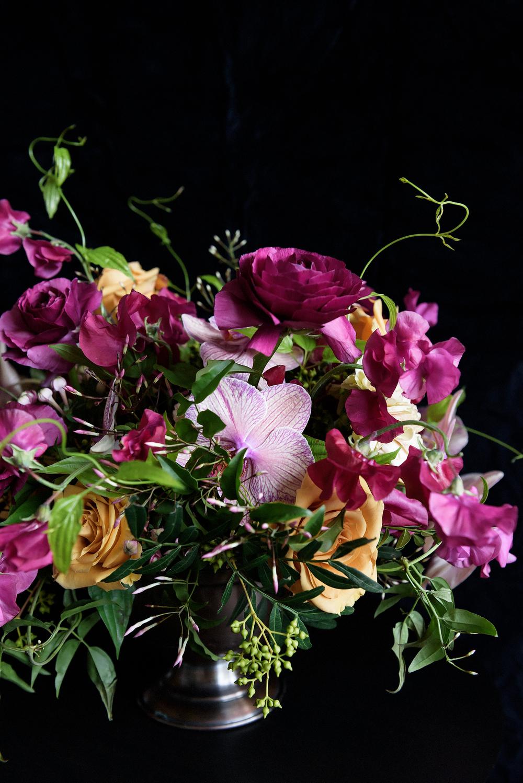 Orchids_002.jpg