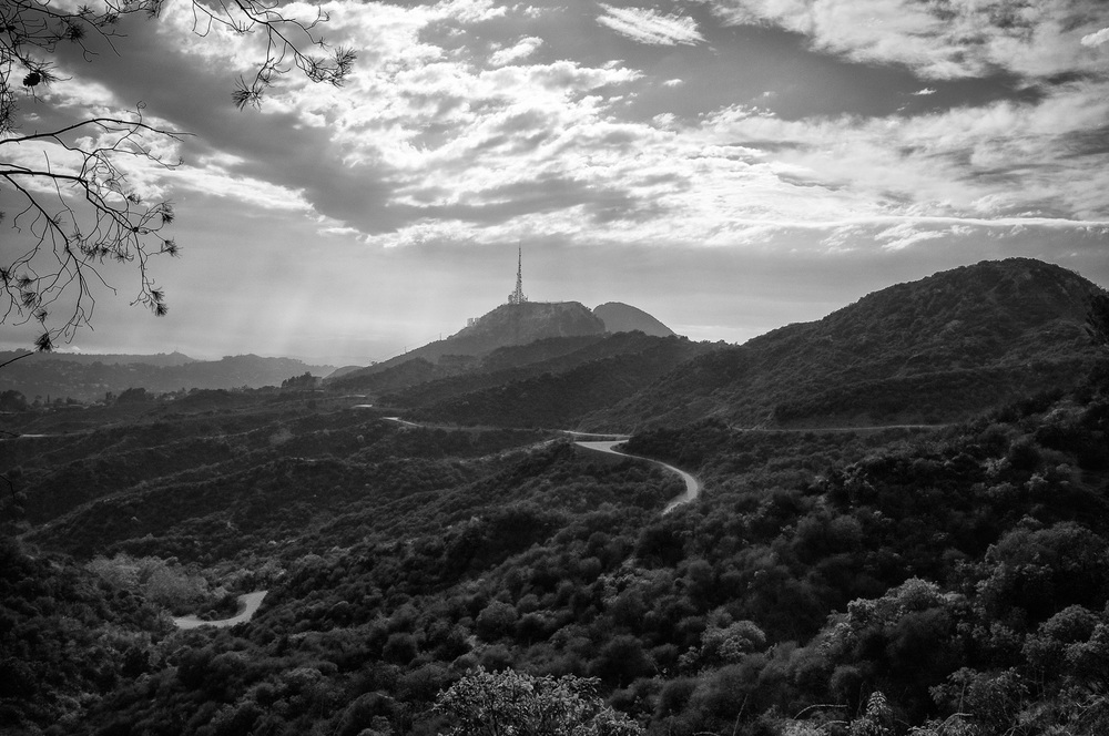 A view back toward the Hollywood sign over the trails of Griffith park.