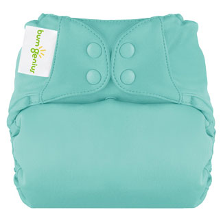 Bum Genius All-In-One, One Size,Organic Elemental Cloth Diaper in Mirror    $24.95    Wants 1  purchased