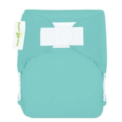 Bumgenius Littles All-In-One Cloth Diaper for Newborns    $14.95 ea    Wants 1 in Mirror    Wants 1 in Clementine