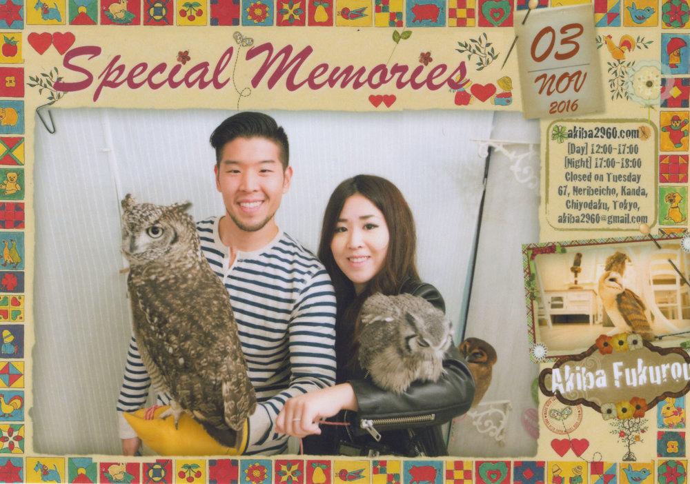 Japan_Owl Cafe.jpg