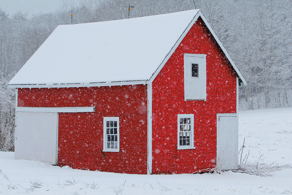 Barn Flurries